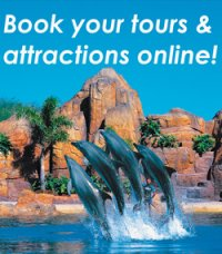 Book your tours & attractions online!