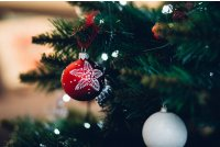 Branch Celebration Christmas Photo By Freestocks