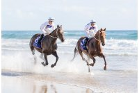Photo From Gold Coast Magic Millions
